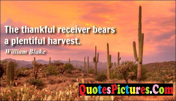 Fabulous Comfort Quote - The Thankful Receiver Bears A Plentiful Harvest. - William Blake