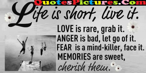 Fabulous Life Quote - Life Is Short Live It