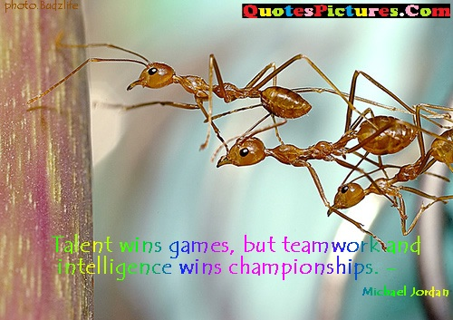 Fabulous Teamwork Quote - Talent Wins Games, But Teamwork And Intelligence Wins Championships.