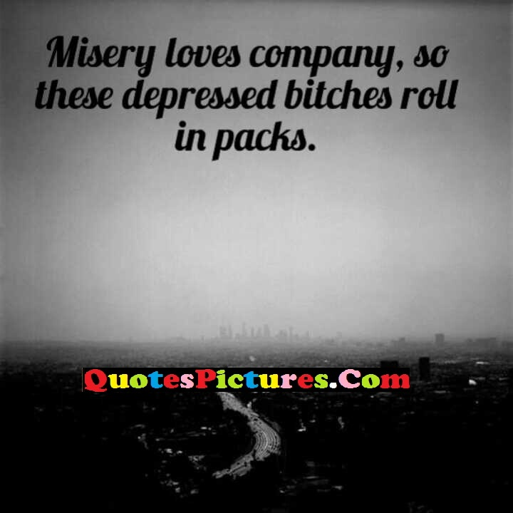 Fanatastic Company Quotes - Misery Loves Company, So These Despressed Bitches Roll In Packs.