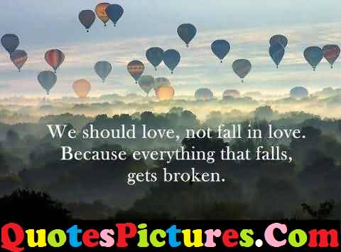 Fantastic Love Quote - We Should Love Not Fall In Love