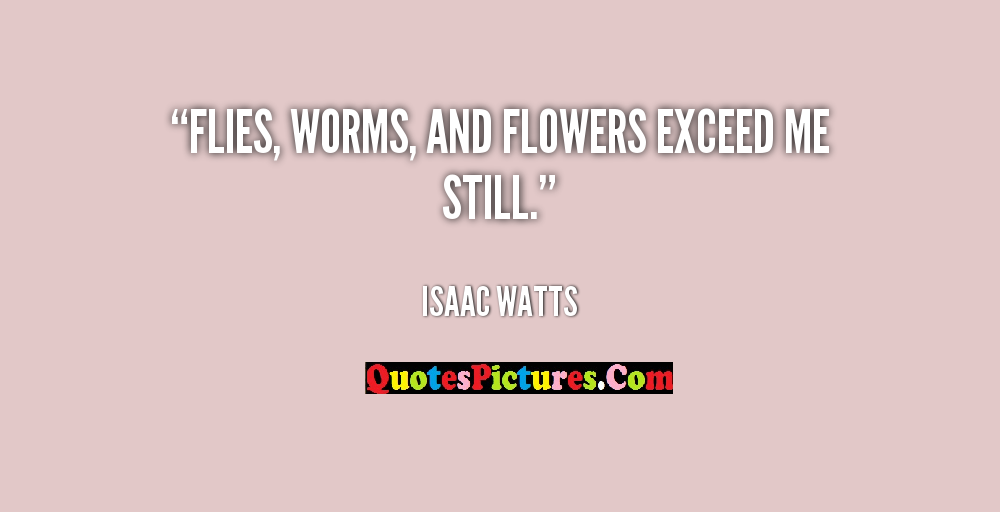 Flowers Quote - Flies, Worms, And Flowers Exceed Me Still. - Isaac Watts