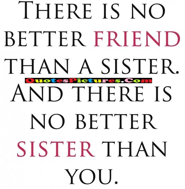 Flowers Quote - There Is No Better Friend Than A Sister. And There Is No Better Sister Than You.