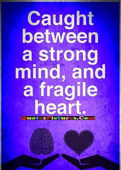 fragile heart with strong mind