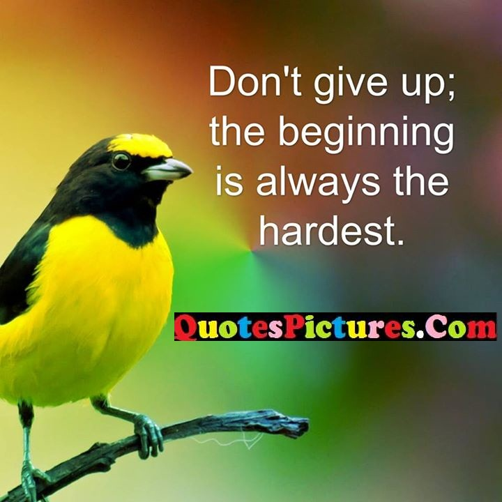 give up beginning always hardest