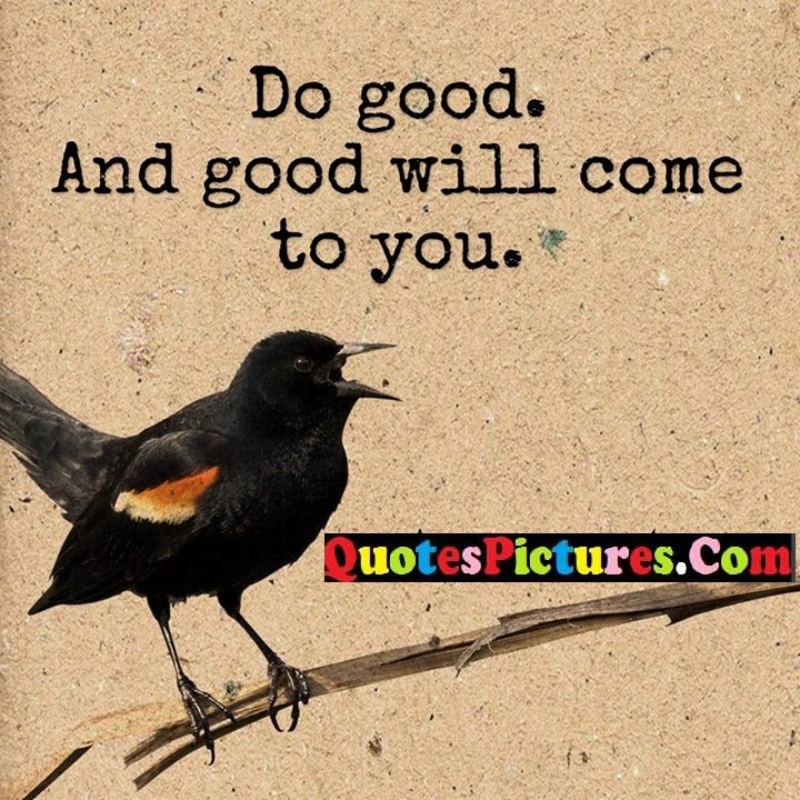 good come you quote