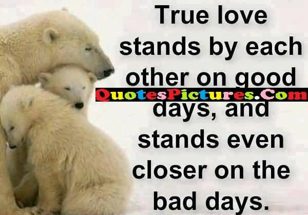 Great Love Quote - True Love Stands By Each Other On Good Days