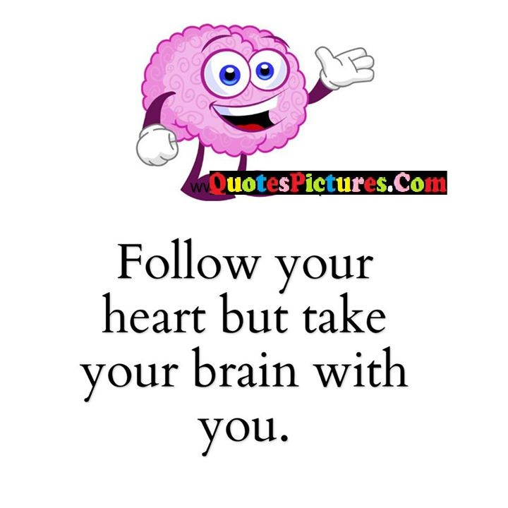 heart take brain quote