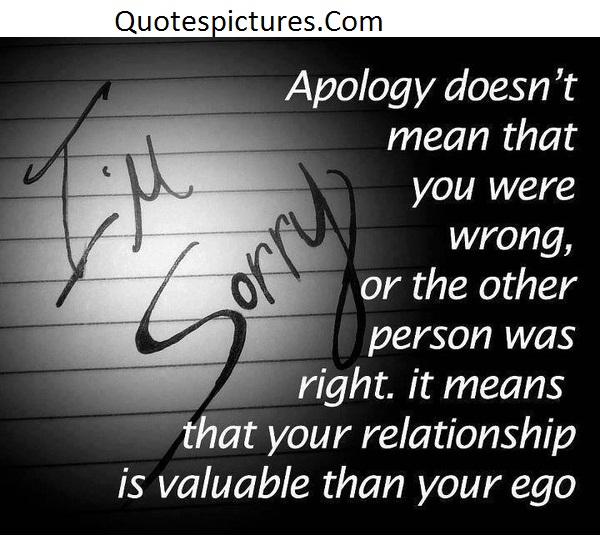 I Am Sorry Apology - Quotes