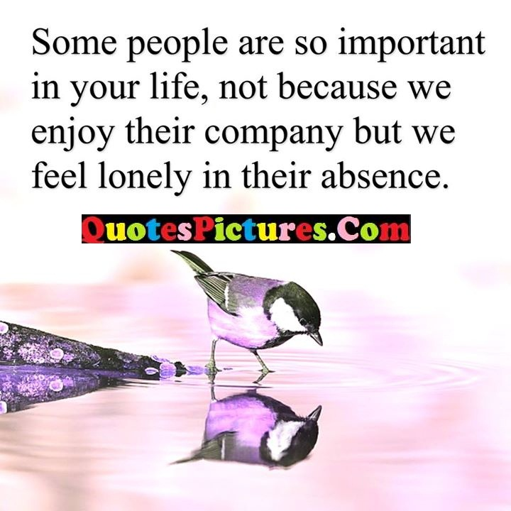 important enjoy lonely absence