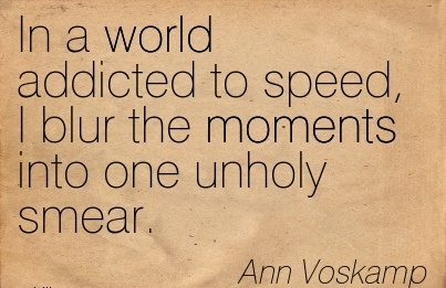 In a world addicted to speed, I blur the moments into one unholy smear.  - Ann Voskamp