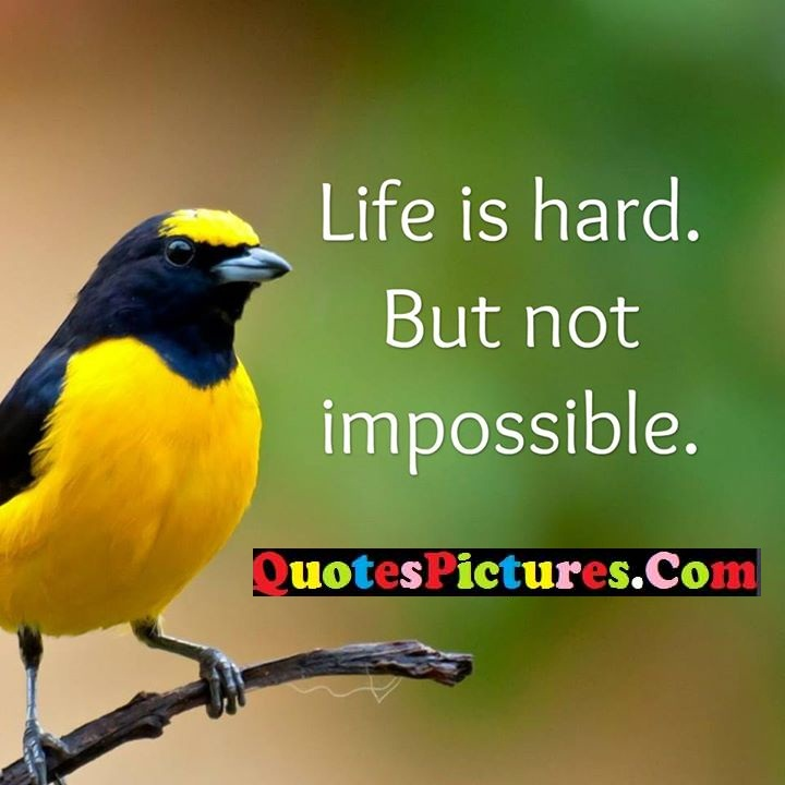 life hard impossible