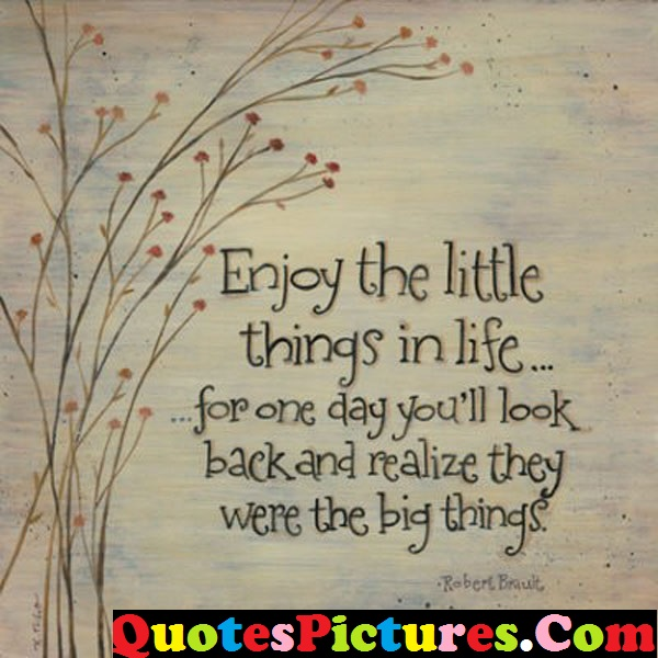 Little Life Quote - Enjoy The Little Things In Life By Robert Brault