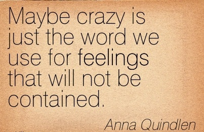 Maybe crazy is just the word we use for feelings that will not be contained.  - Anna Quindlen