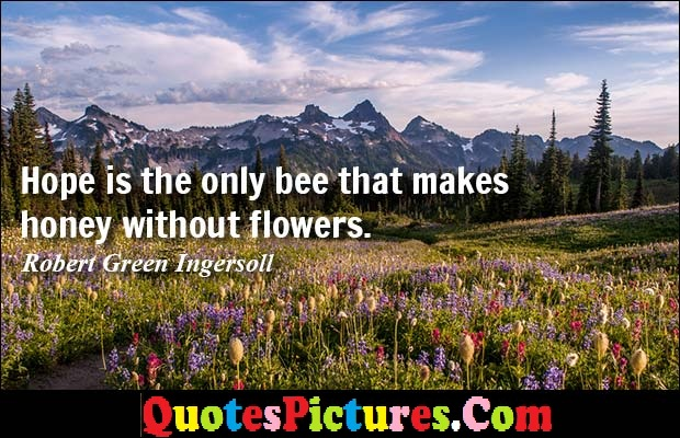 Motivational Flowers Quote - Hope Is The Only Bee That Makes Honey Without Flowers. - Robert Green Ingersoll
