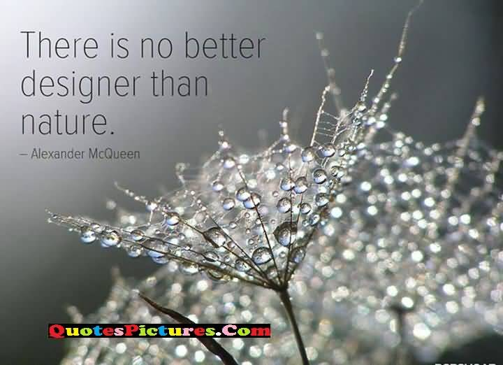 nature a better designer