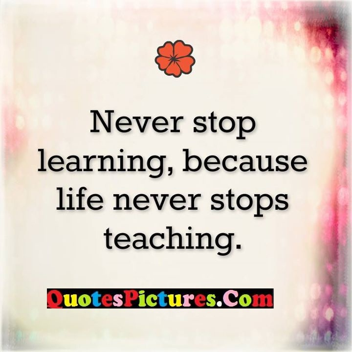 never learning teaching quote
