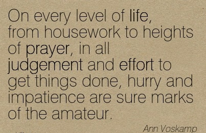 On every level of life, from housework to heights of prayer, in all judgement and effort to get things done, hurry and impatience are sure marks of the amateur.  - Ann Voskamp