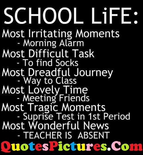 School Life Quote - Most Wonderful News,Time,Moments,Journey,Task