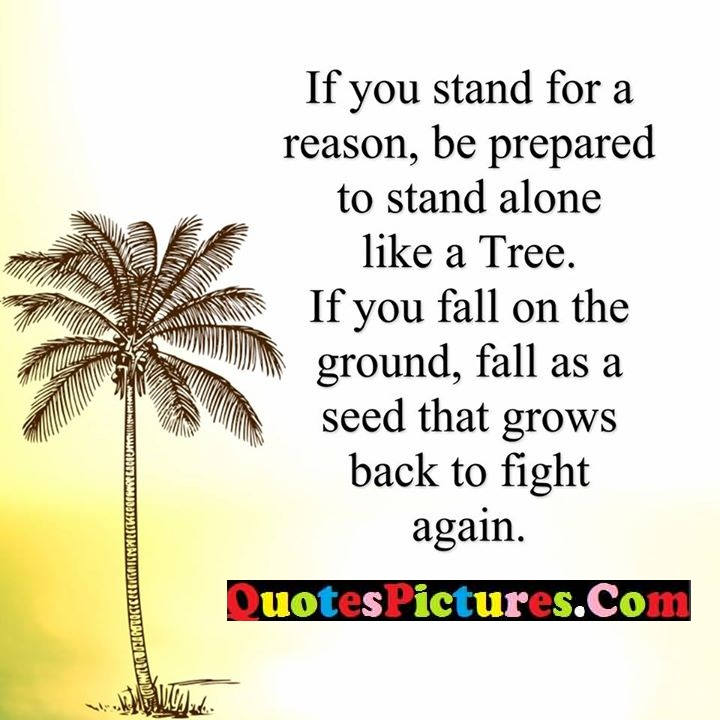 stand reason like ground