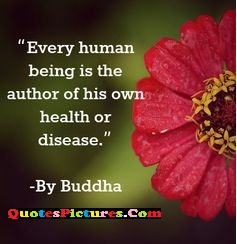 True Health Quote - Every Human Being Is The Author Of His Own Health Or Disease. - By Buddha