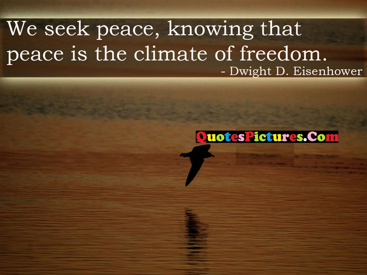 True Peace Quote - We Seek Peace, Knowing That PEace Is The Climate Of Freedom.