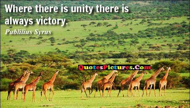 Victory Quote - Where There Is Unity There Is Always Victory.
