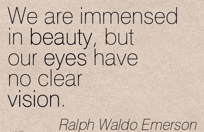 We are immensed in beauty, but our eyes have no clear vision.