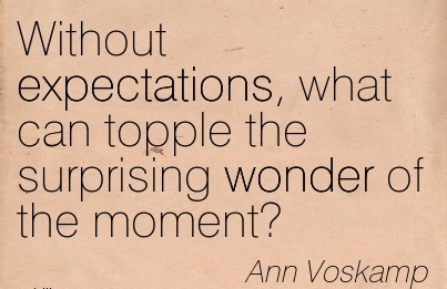 Without expectations, what can topple the surprising wonder of the moment.  - Ann Voskamp