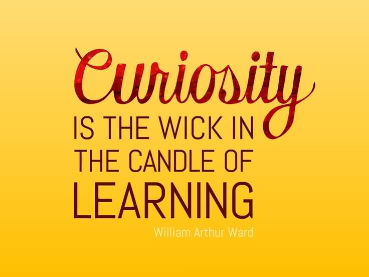 Curiosity Quotes And Curiosity Sayings Images