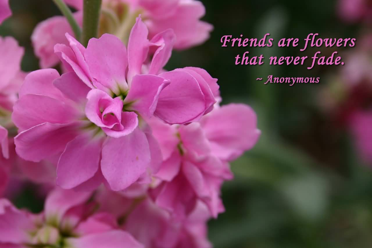 Flower Quotes And Flower Sayings Images