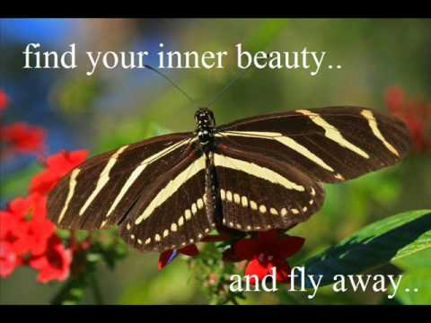 Find Your Inner Beauty And Fly Away Nature Quote Quotespictures Com