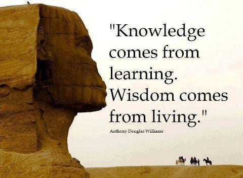 Amazing Wisdom Quote ~ Knowledge comes from learning ...