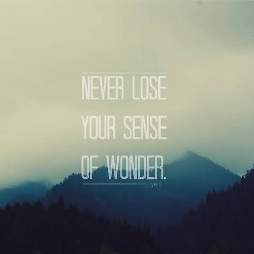 Wonder Quotes Wonder Quotes Pictures and Wonder Quotes Images with Message Wonder Quotes